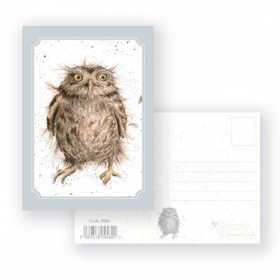P009 'What a Hoot' Postcard