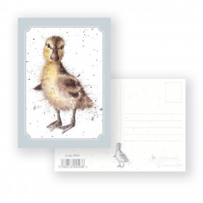 P019 'Just Hatched' Postcard