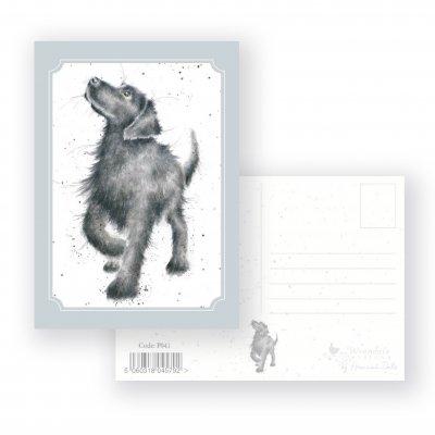P041 'Walkies' Postcard