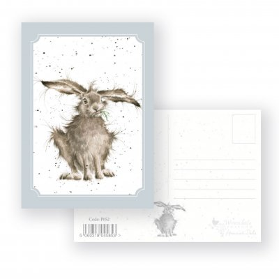 P052 'Hare-Brained' Postcard