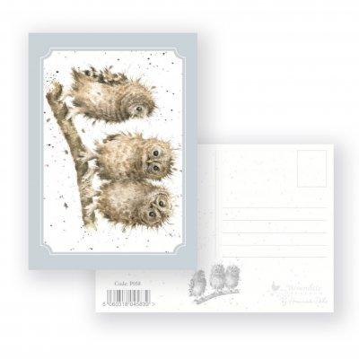 P058 'You First!' Postcard