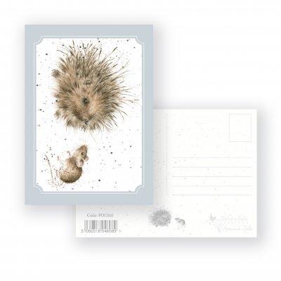 POC010 'Lovely Friend' Postcard