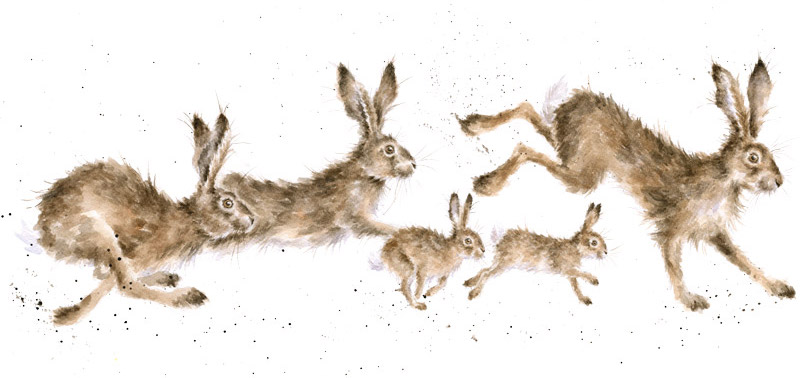 Wrendale Designs Hares